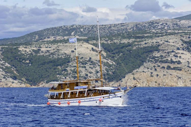 Albatros Rijeka 10cabins 22pax 2