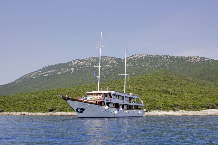 Amore 19 cabins 40 pax Trogir 6