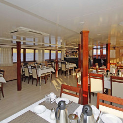 Carpe Diem 17 cabins 35 pax Zadar 22