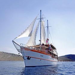Dalmatino 13 cabins 26 pax Zadar 1