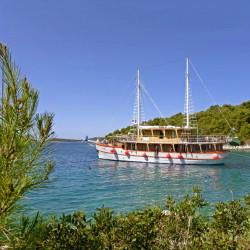 Dalmatino 13 cabins 26 pax Zadar 12