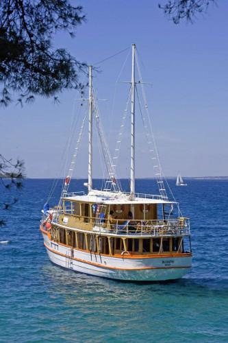 Dalmatino 13 cabins 26 pax Zadar 15