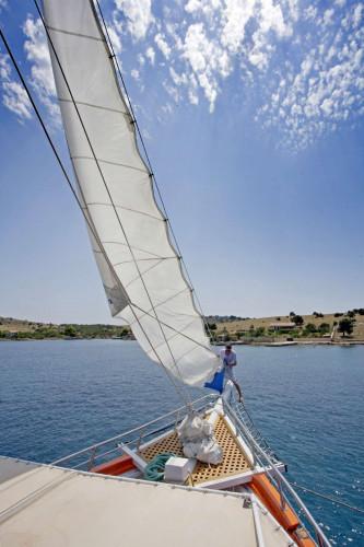 Dalmatino 13 cabins 26 pax Zadar 21