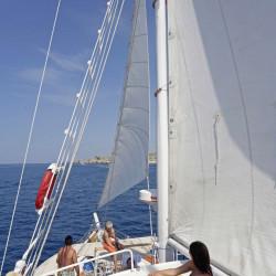 Dalmatino 13 cabins 26 pax Zadar 22