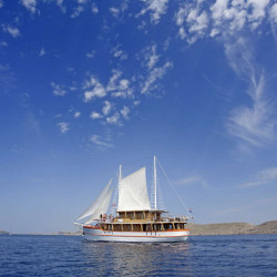 Dalmatino 13 cabins 26 pax Zadar 6