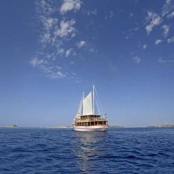 Dalmatino 13 cabins 26 pax Zadar 8